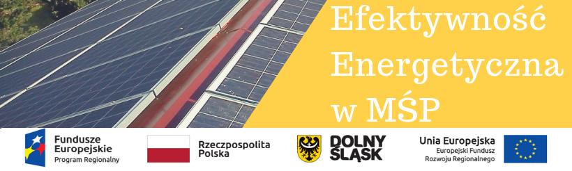 Efektywność Energetyczna MŚP11.png